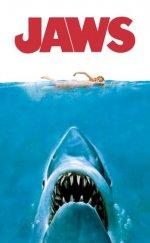 Denizin Dişleri (Jaws) izle